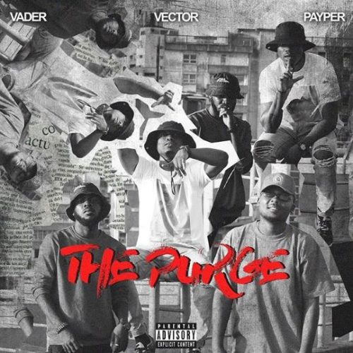 Vector-The-Purge
